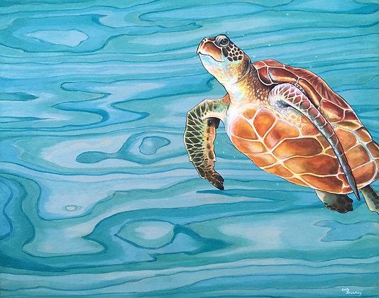 Lanikai (Heavenly Sea) Original Painting