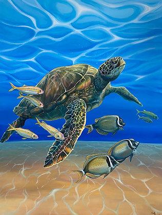 """""""Lokahi"""" Sea Turtle Acrylic Painting"""
