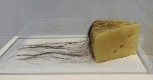 Swiss Cheese with Hair BLOG.JPG