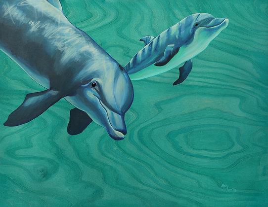 """Bottlenose Dolphins"" Greeting Card"