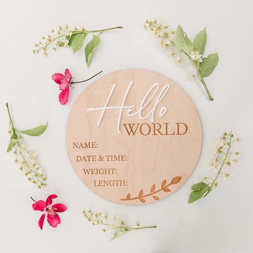 Hello World Birth Detail Keepsake Sign