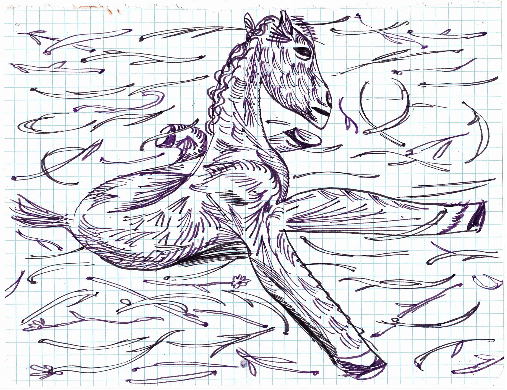 study for Red Horse