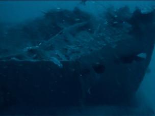 令和3年度 駆逐艦「蕨」水中調査について