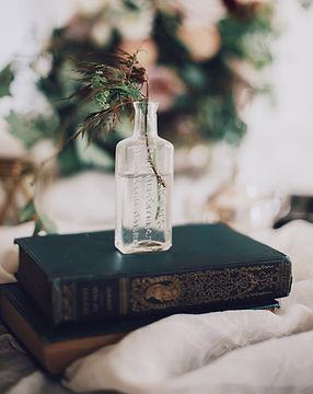 Plant in einer Glasflasche