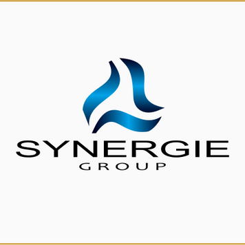 LIONA: Logo Synergie Group