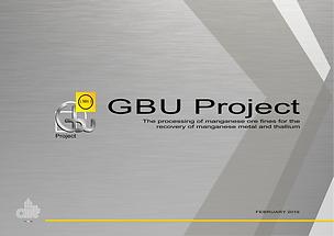 LIONA per AIT GBU Project.png