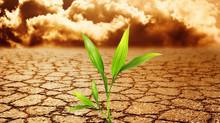 La Reconomia, Pianeta Resiliente, Civiltà Resiliente con Economia Resiliente