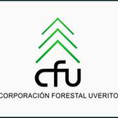 LIONA: Logo CFU