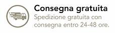 Pegaso eCommerce Consegna Gratuita.png