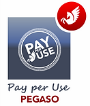 Logo Pay per Use 2.png