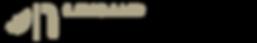 Pegaso 1.Faro a LED Descrizione nero.png
