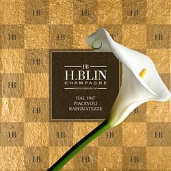 Liona Brochure Champagne H.Blin