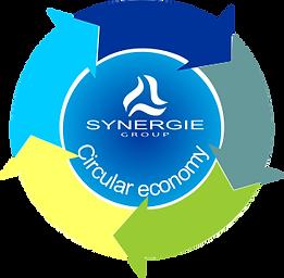 Logo Circular Economy.png