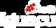 logo_iguacu.png