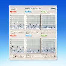 Pizzara interactiva para contol de métrica diarias y mensuales