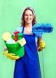9027697-housewife.jpeg
