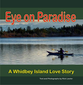 eye+on+paradise+cover.jpg
