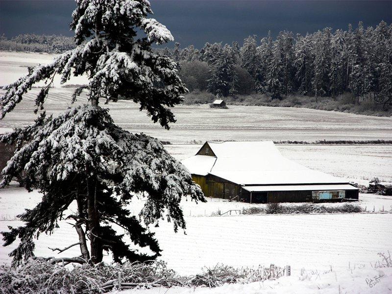 Ebey's Landing Snow Storm