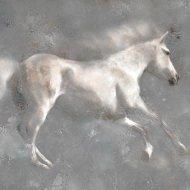 white horse running 30 x 40