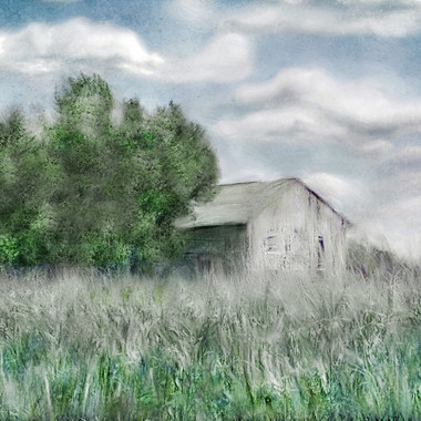 Old White Shed