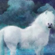 White Wispy Pony