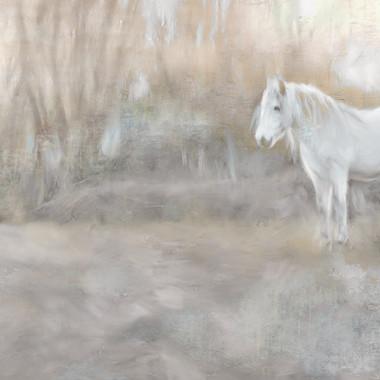 White Mares Landscape 12 x 54.jpg