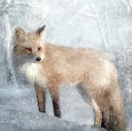 Winter Fox in Falling Snow 24 x 32