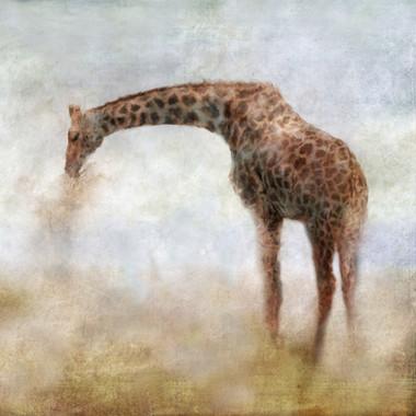 Serengeti Series Giraffe
