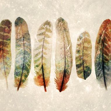 Feather Set I