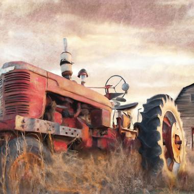 autumn tractor in field 20 x 30