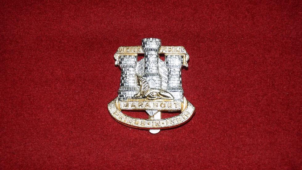 Devonshire & Dorset Regiment
