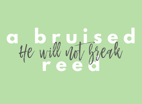 A bruised reed He will not break