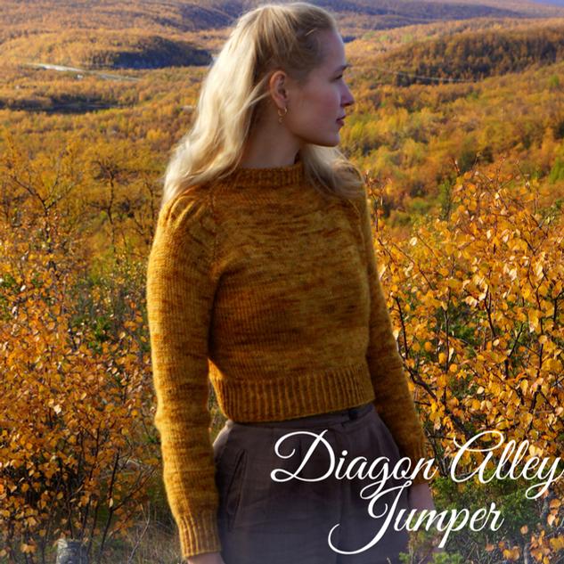 Diagon Alley Jumper