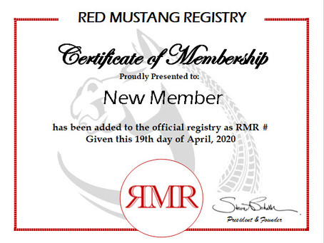 New Member Update - April 19, 2020