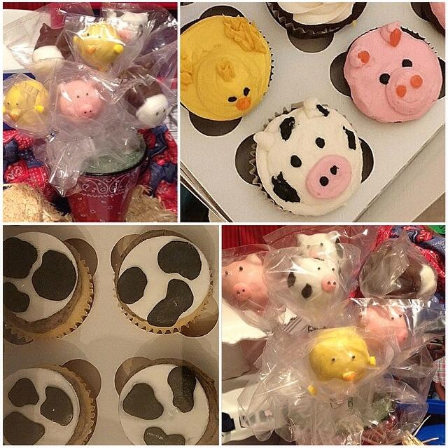 barn animal cupcakes and cake pops.jpg