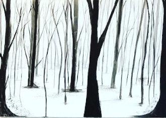 Snowy Forest II