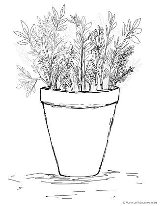 Plants in a pot