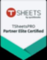 PRO Partner elite badge.png