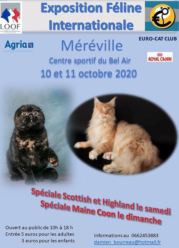 AFFICHE_méréville_2020.jpg