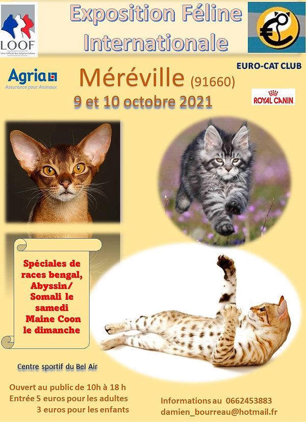 AFFICHE méréville 21.jpg