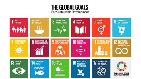 the-global-goals-grid-color%20full_edited.jpg