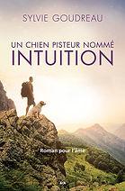 SG_Intuition.jpg