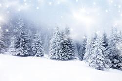 Sacred Christmas Blessings