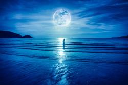New Moon Rising Ritual