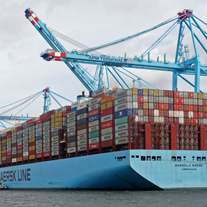 Major container ship newbuilding unlikely despite record freight rates