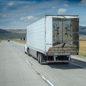 5 trucking sustainability trends for 2021