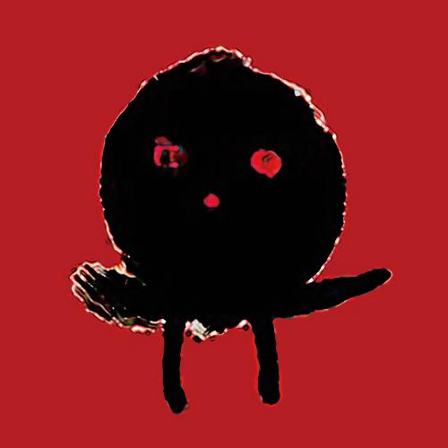 Kiyoshi Arai | 新井清志