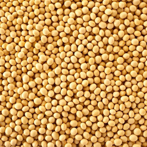 Has Brazil become a new customer for U.S. corn and soy exporters?