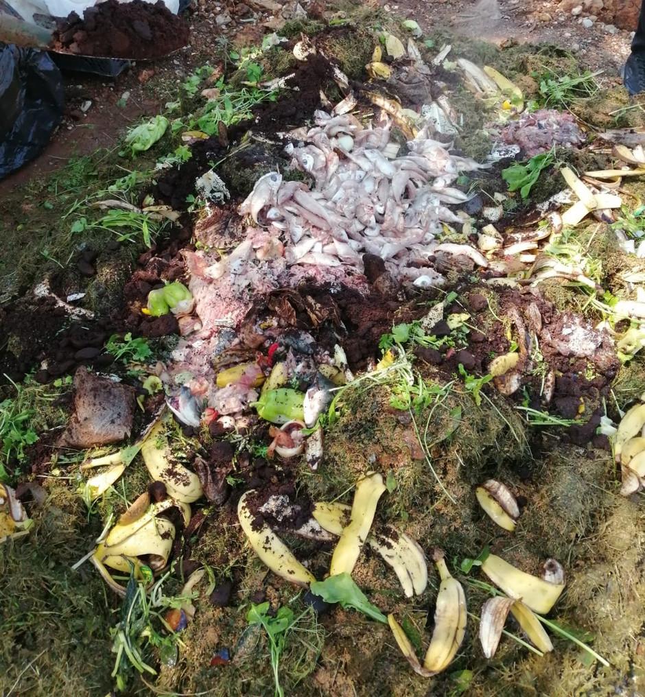 Çiftçiler için Pratik Bokashi Kompost Yapımı