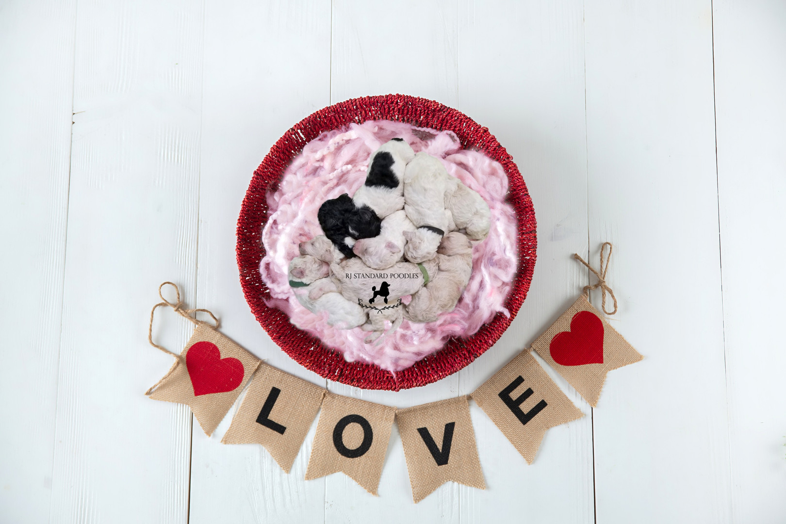valentine basket love banner Suzy's litt